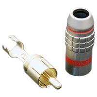 Tchernov Cable RCA Plug Standard 1 Red