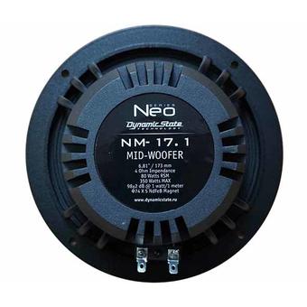 НЧ/СЧ-динамик Dynamic State NM-17.1